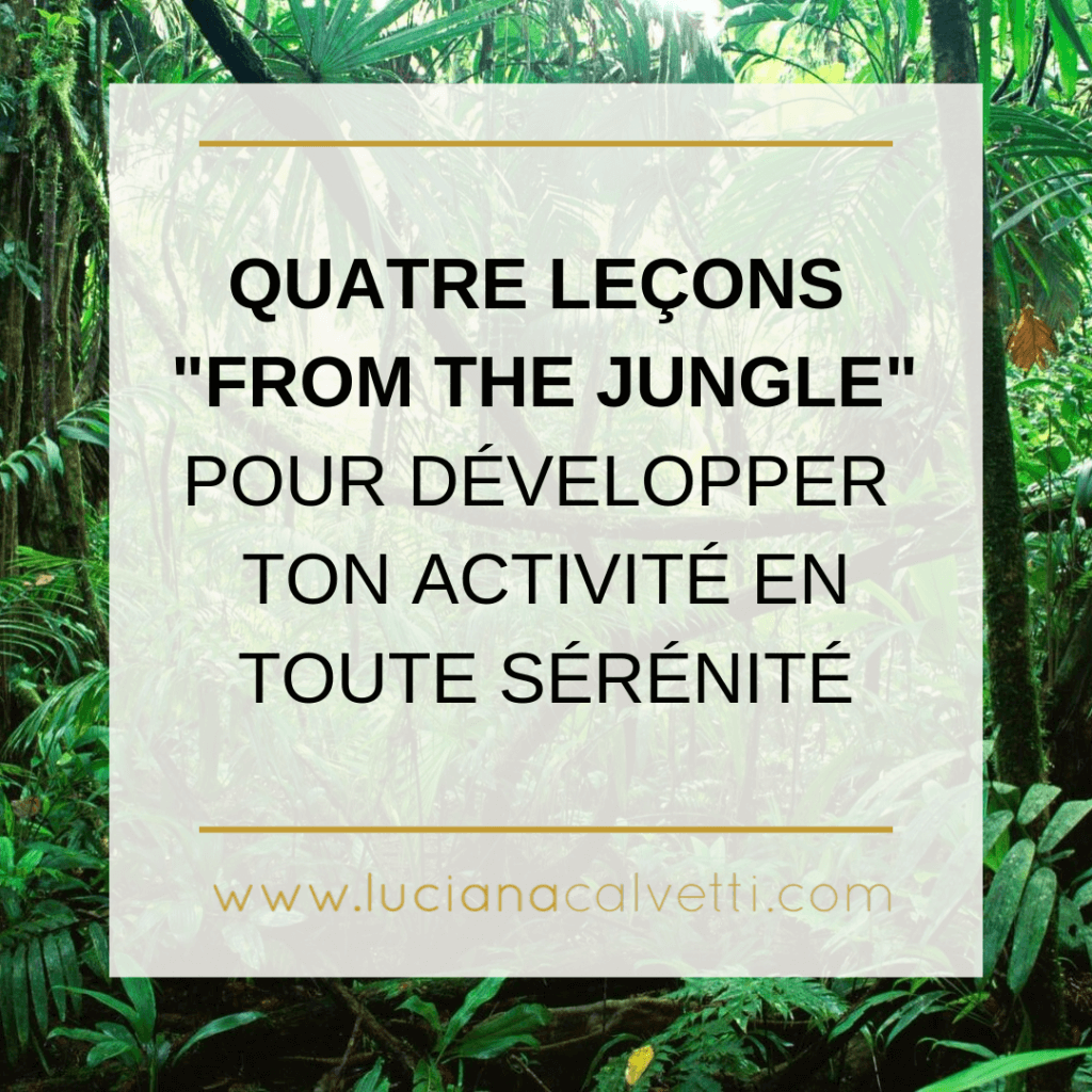 4 leçons from the jungle